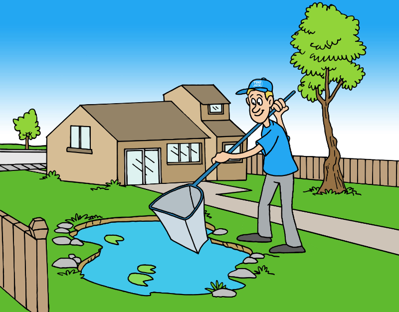 How To Clean A Pond Without Draining It In Just 3 Easy Steps