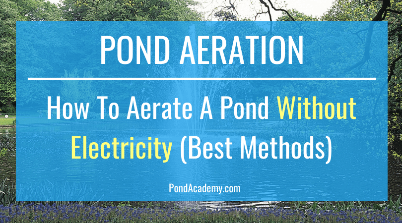 Aerate A Pond Without Electricity